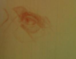 jeris-eye.jpg
