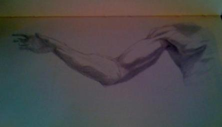 Silverpoint Drawing of Wayne's right arm