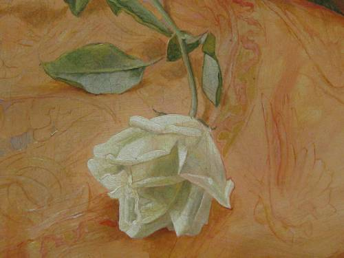 Close up of the White Rose