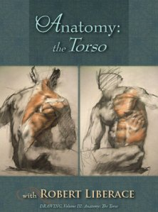 Anatomy of the Torso